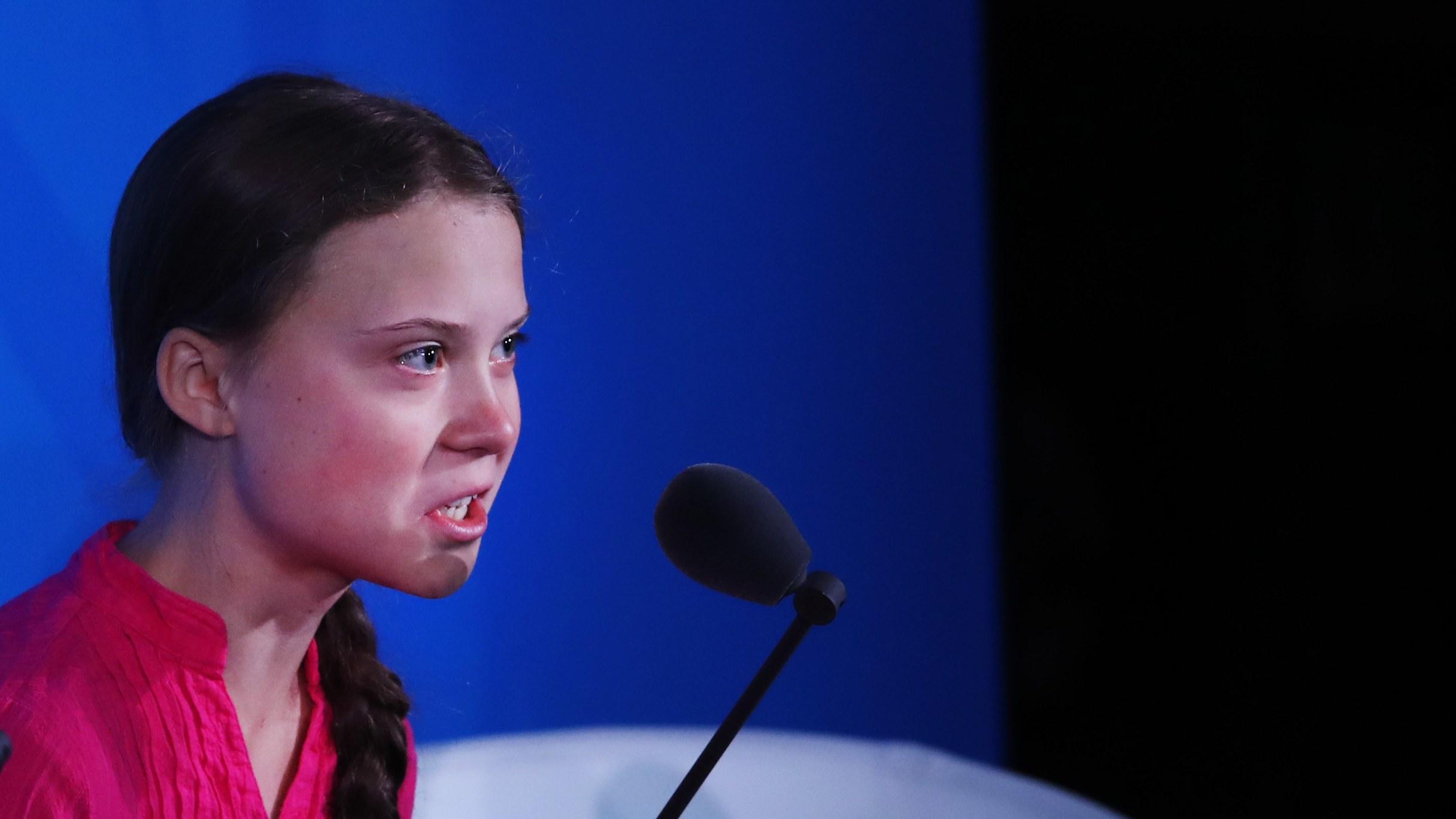 Greta e la grande Confusione, 2. Lettera aperta a Greta Thunberg